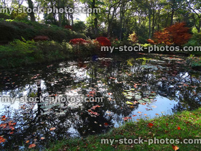 My Stock Photos Of Garden Ponds Gardens Royalty Free Images Of