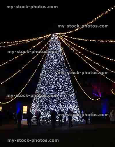stock image of large outdoor christmas tree with fairy lights decorations people watching